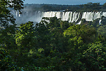 Tropical rainforest in Iguazu Falls National Park in Argentina.  Above the trees from left to right are the Salto Esccondido or Hidden Waterfalll, San Martin Falls, and Mbigua Falls.  A UNESCO World Heritage Site.