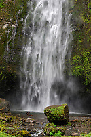 Multnomah Falls, Columbia River Gorge, Oregon, USA, 200809010821<br />