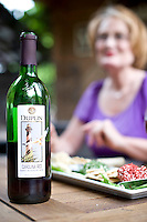 Wine tasting and hors d'oeuvres in the Duplin Winery bistro courtyard.