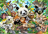 Howard, SELFIES, paintings+++++,GBHR923,#Selfies#, EVERYDAY ,panda,pandas