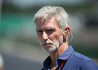 Damon Hill during The Formula 1 2018 Rolex British Grand Prix at Silverstone Circuit, Northampton, England on 8 July 2018. Photo by Vince  Mignott.