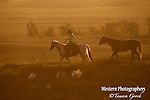 A photo of a cowgirl ponying another horse behind her at sunrise. Cowboy Photos, riding,roping,horseback