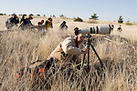 Photographers take aim onSnowy Owls as they make an appearance  at Damon Point, Grays Harbor County, Washington. The rare visitors from the Arctic will be staying in the area, feasting on small mammals and fattening up before departing in March headed on their way back to the Arctic to breed.  ©2012. Jim Bryant Photo. All Rights Reserved.