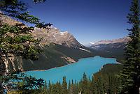 AJ3643, Banff National Park, Peyto Lake, glacier lake, Alberta, Canada, Canadian Rockies, Rocky Mountains, Scenic view of the turquoise colored Peyto Lake in Banff National Park in the province of Alberta.