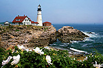 Portland Head Light with white roses, Cape Elizabeth, Maine, USA