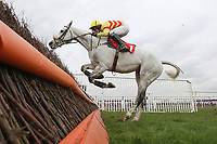 Takeroc ridden by Tom Cannon in jumping action in the Racing Plus Chase Day 230212 Handicap Chase - Horse Racing at Kempton Park Racecourse