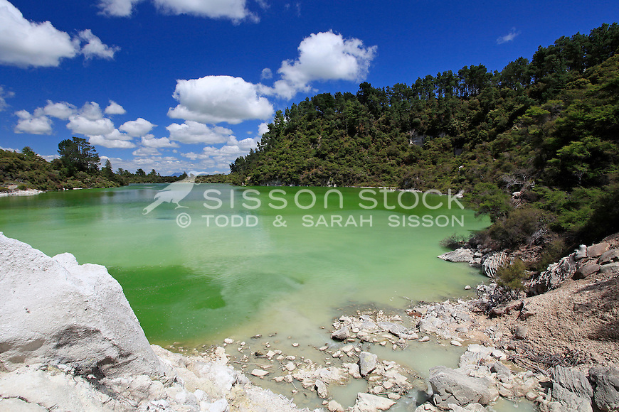 The Green lake at Wai O Tapu thermal region, Rotorua, geothermal scenic attraction, North Island - New Zealand<br /> <br /> NO NEW ZEALAND SOUVENIR OR POSTCARD LICENCING PERMITTED