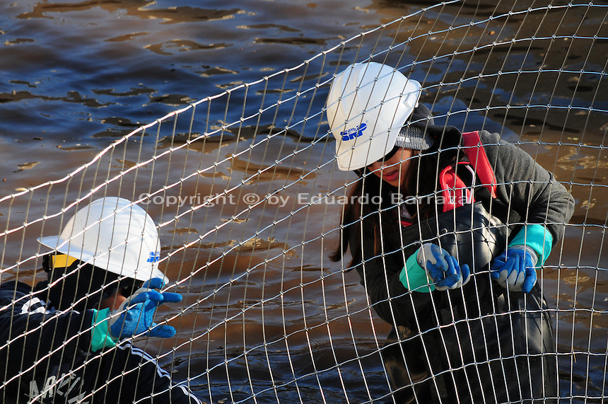 Scottsdale, Arizona (January 12, 2013) - As part of a seven-year plan to dry up all portions of its 131-mile canal system, Salt River Project (SRP), relocated the White Amur fish they used as an environmentally friendly and cost effective alternative to herbicides and heavy machinery for vegetation control. In this image, two workers inside the canal stretch wire fence used to create a physical barrier for fish, so they can be corralled and gather for transport to another section of the canal. Photo by Eduardo Barraza © 2013
