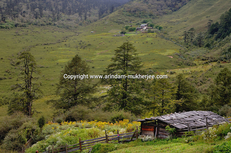 A farmland on the way to Trongsha. Arindam Mukherjee..