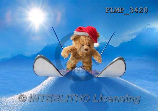 Marek, CHRISTMAS ANIMALS, WEIHNACHTEN TIERE, NAVIDAD ANIMALES, teddies, photos+++++,PLMP3420,#Xa# in snow,outsite,