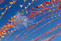 Oranje vlaggetjes in Scheveningen