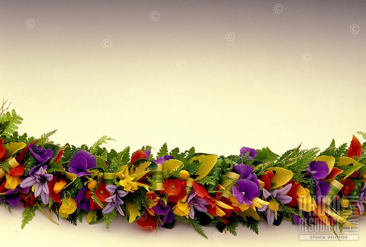 Colorful haku flower  lei on white backround