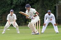 Cricket 2013-08