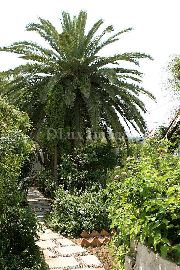lush garden with stone path