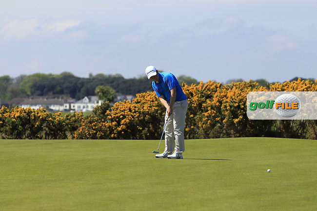 Jack Hume (Naas) on the 7th green during Round 4 of the Flogas Irish Amateur Open Championship at Royal Dublin on Sunday 8th May 2016.<br /> Picture:  Golffile / Thos Caffrey