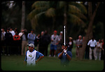 Tiger Woods chips out of the bunker at the Genuity Open at Doral in Miami, Fl.