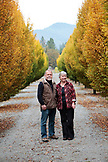 USA, Oregon, Medford, Cal and Judy Schmidt stand among the trees on their farm, Schmidt Family Vineyards is located in the beautiful Applegate Valley and is owned by Judy and Cal Schmidt, the winery consists of country charm, beautiful gardens and fine wines