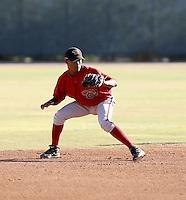 Antonio Sepulveda / Arizona Diamondbacks 2008 Instructional League..Photo by:  Bill Mitchell/Four Seam Images