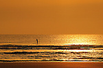 Stand up Paddling in Saint Augustine, Florida