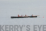 PULLING TOGETHER: Rowers in action at the start of the Brandon Regatta on Sunday.
