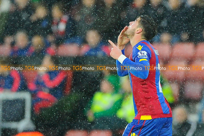 Goalscorer Joel Ward of Crystal Palace looks to the sky as he celebrates during Southampton vs Crystal Palace at St Mary's Stadium