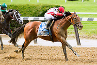 ELMONT, NY - JULY 08:  Practical Joke#3, ridden by Joel Rosario , wins the Dwyer Stakes, at Belmont Park on July 8, 2017 in Elmont, New York (Photo by Sue Kawczynski/Eclipse Sportswire/Getty Images)