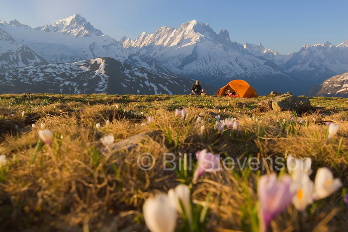 A photo of a couple camping in a field of flowers in the the Mont Blanc range in the French Alps.
