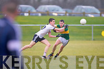 IT Tralee v Barry Kerry in the McGrath cup at John Mitchels on Sunday.
