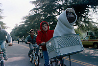 E.T. the Extra-Terrestrial (1982)  <br /> Henry Thomas <br /> *Filmstill - Editorial Use Only*<br /> CAP/KFS<br /> Image supplied by Capital Pictures