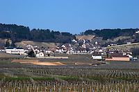 vineyard volnay cote de beaune burgundy france