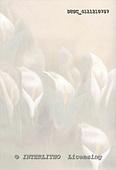 Hans, SYMPATHY, paintings+++++,DTSC4111210757,#T# Beileid, condolación, illustrations, pinturas ,everyday