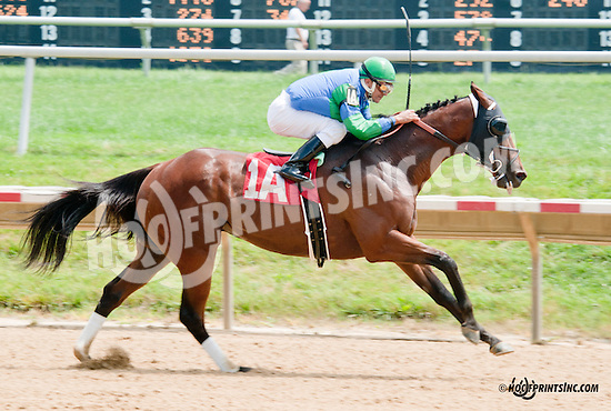 Back Room Deal winning at Delaware Park on 7/10/13
