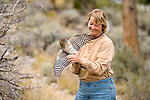 Hawkwatch International volunteer Gretchen Henne releases a Cooper's Hawk at Hawkwatch International's Goshute mountain research station. This hawk and raptor banding project is at the largest raptor migration flyway west of the Mississippi in the Goshute mountains of eastern Nevada.