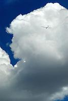 4415 / Cumulus: AMERIKA, VEREINIGTE STAATEN VON AMERIKA, NEVADA,  (AMERICA, UNITED STATES OF AMERICA), 24.07.2006: Segelflugzeug unter Cumulus in Nevada