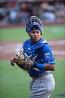Kansas City Royals catcher Meibrys Viloria (19) during an Instructional League game against the Arizona Diamondbacks at Chase Field on October 14, 2017 in Scottsdale, Arizona. (Zachary Lucy/Four Seam Images)