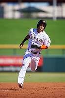 Mesa Solar Sox Yefri Perez (1), of the Miami Marlins organization, during a game against the Scottsdale Scorpions on October 18, 2016 at Sloan Park in Mesa, Arizona.  Mesa defeated Scottsdale 6-3.  (Mike Janes/Four Seam Images)