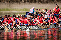 Today is raceday. The dragonboat sail heats of five boat qualifying to a heat later saturday.<br />  IBCPC Dragon Boat Festival i Firenze er en dragebådsfestival for brystkraftramte kvinder. Copenhagen Dragonboat Team deltager med godt 20 kvinder i alderen fra 25 til 62.<br /> <br /> Foto: Jens Panduro<br /> <br /> The IBCPC Dragon Boat Festival is held every four years under the auspices of the International Breast Cancer Paddler's Commission. The Festival is an international non-competitive participatory event targeting Breast Cancer Survivors teams who engage in Dragon Boat activities as post-operative rehabilitation. Born from the idea of a Canadian sports medicine physician, Doctor Don McKenzie about twenty years ago, Dragon Boat paddling has become a rehabilitation therapy for tens of thousands of men and women worldwide, who have undergone surgery.<br /> For the first time since its institution in 2005, the IBCPC FESTIVAL will be held in Europe – in Italy!! The Florence 2018 Festival will involve 129 teams from 17 countries , and for the very first time ALL the continents are represented.<br /> Organised and promoted by FIRENZE IN ROSA Onlus as the official Organising Committee, the Florence Festival will be a sporting event but above all a social occasion in which Florence will welcome from 4,000 to 5,000 people from all over the world. The participants are mainly women between the ages of 20 and 80, who will meet to take part in the exciting Dragon Boat races, paddling together on the Arno. They will also be accompanied by their friends and family, their faithful and enthusiastic supporters.