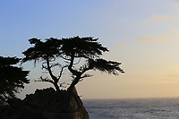 Sun sets at the Lone Cypress Tree famous landmark on the Monterey coastline Sunday's Final Round of the 2018 AT&amp;T Pebble Beach Pro-Am, held on Pebble Beach Golf Course, Monterey,  California, USA. 11th February 2018.<br /> Picture: Eoin Clarke | Golffile<br /> <br /> <br /> All photos usage must carry mandatory copyright credit (&copy; Golffile | Eoin Clarke)
