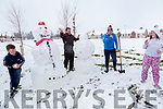 Mike McCarthy, Mike McCarthy, Liam Barrett and Bryony Kelly  enjoying the snow in Ashgrove Listowel on Friday.