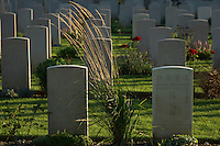 Gravestones of Chinese labourers died during World War I stand at Chinese Labour Corp Cemetery in Noyelles-sur-Mer, La Somme, France, August 18, 2014. 2014 marks 100th anniversary of the Great War.