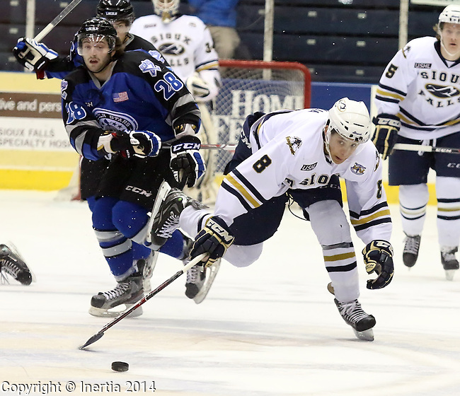 SIOUX FALLS, SD - JANUARY 7:  Dakota Joshua #8 from the Sioux Falls Stampede lunges for the puck in the first period pas an unidentified Lincoln Stars player Tuesday, January 4, 2014 at the Sioux Falls Arena in Sioux Falls, South Dakota. (Photo by  Dave Eggen/Inertia)