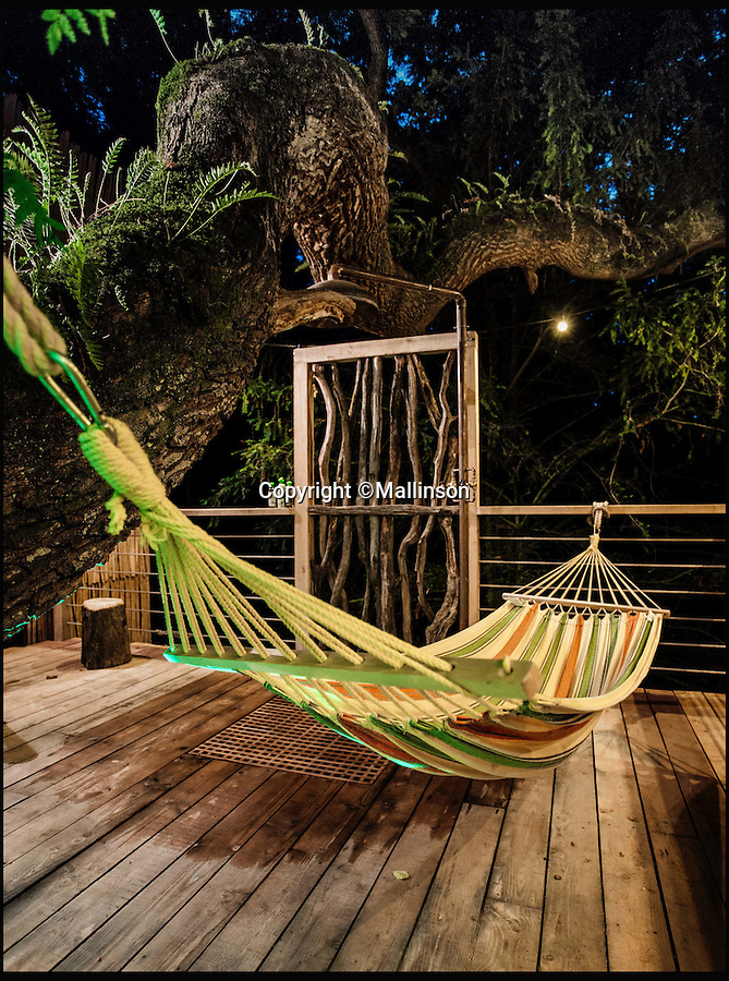 BNPS.co.uk (01202 558833)<br /> Pic: Mallinson/BNPS<br /> <br /> Outdoor  hammock...<br /> <br /> Release your inner Tarzan...in Britain's poshest treehouse.<br /> <br /> A luxury glamping site in deepest Dorset has created a luxurious treehouse that comes with its own sauna, hot tub, rotating fireplace and pizza oven.<br /> <br /> The Woodsman's Treehouse is perched 30ft from the ground on long stilts and has two floors. <br /> <br /> It has a spiral staircase and a stainless steel slide for quick access to the ground and can be rented out from £390 a night. <br /> <br /> It is located at the Crafty Camping glamping site at Holditch in west Dorset.