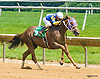 A Max winning at Delaware Park on 6/14/17