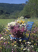 Interlitho-Helga, FLOWERS, BLUMEN, FLORES, photos+++++,meadow, chair,KL16530,#f#, EVERYDAY ,roses