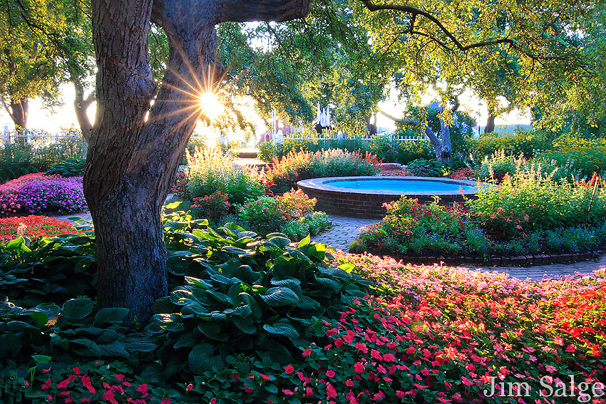 The gardens in Prescott Park in Portsmouth, New Hampshire are always beautiful, but you can't beat being there at sunrise as the first rays rise over the harbor!