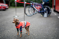 After having 10 bikes stolen just the week prior, Team Bahrain-Merida seriously stepped up their security at the race start... sort of<br /> <br /> Stage 6: Le parc des oiseaux/Villars-Les-Dombes &rsaquo; La Motte-Servolex (147km)<br /> 69th Crit&eacute;rium du Dauphin&eacute; 2017