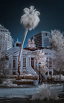 Trowbridge House, Oakland, California (Infrared)