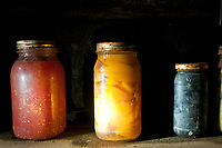 Jars of fruits and vegetales stored inside the root cellar at the Knox-Metzker log cabin on the grounds of McVay Elementary School in Westerville at the annual Ned Mosher Apple Butter Festival. The festival held at the cabin every year helps raise money to maintain the cabin as a teaching tool for students at the school. iPhone photo manipulated with apps.