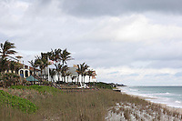 Windsor viewed across the long grasses of the sandy Florida coast, its palm trees blowing in strong sea breezes