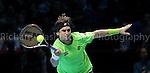 David Ferrer - Tennis